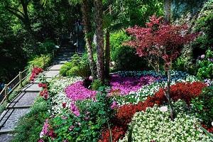 Cascata del Varone Botanical Garden