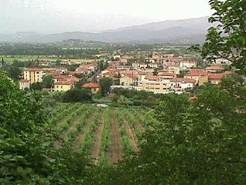 The Town of Arezzo