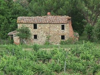 Vacant Country Home Arezzo