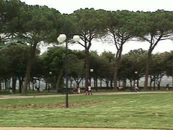 Park in Arezzo