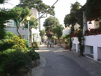 Narrow Roads of Capri