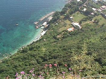 Hillside & Coast of Capri