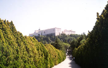 Road leading to the Abbey