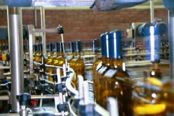 Production line at Fontana Candida Winery