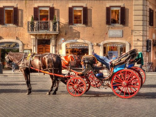 Coachman, Horse and Carriage Rome Italy